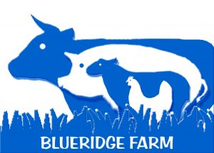 Blueridge farm logo
