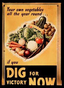 vintage 'dig for victory' poster