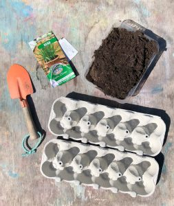 materials for growing seeds in egg boxes