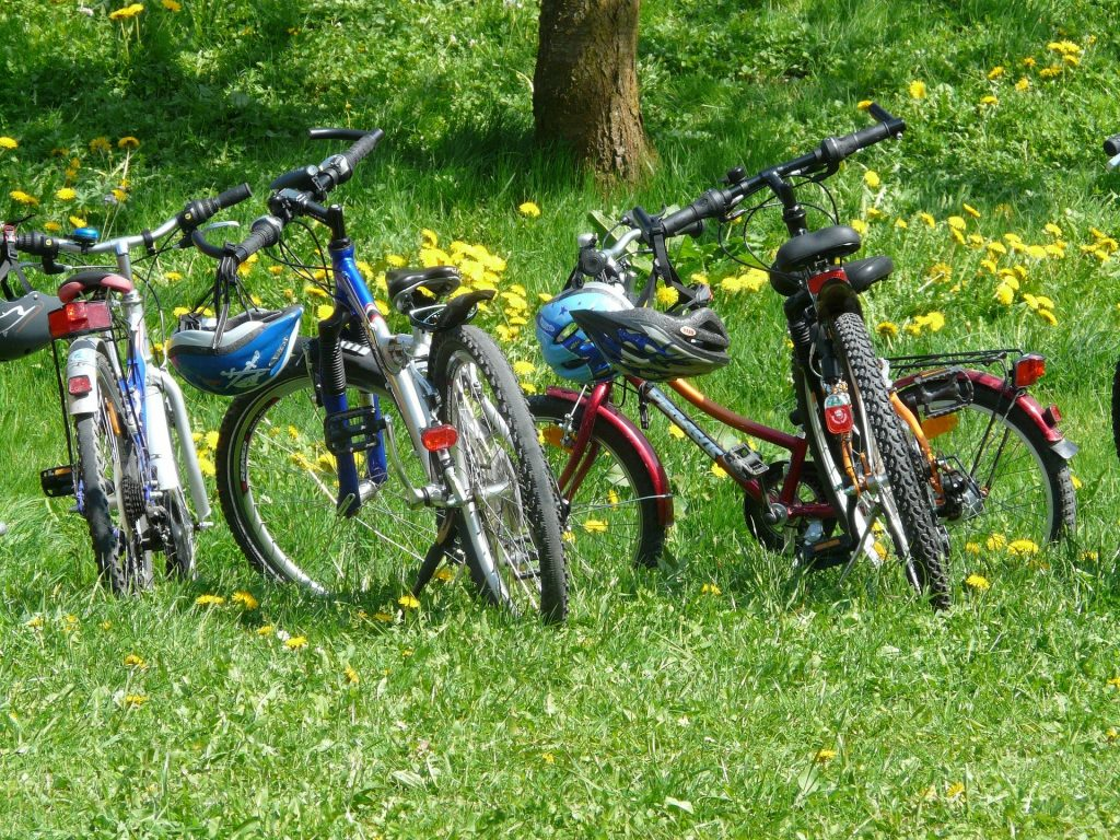 Bikes lined up on grass