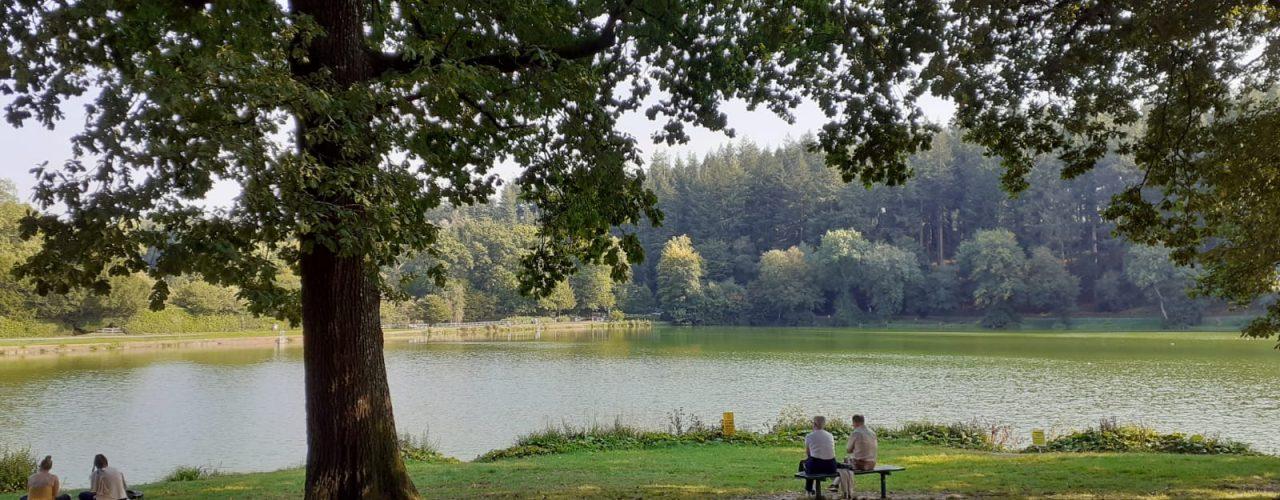 Shearwater Lake